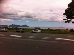 View across SH1 from Fatigue Stop at Uretiti